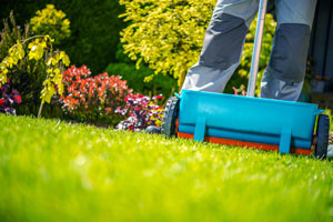 Lawn fertilization services in Apopka and Orlando FL - Hero Home & Outdoor