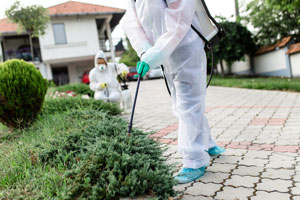It's important to receive annual termite treatment. Heron provides annual inspections in Florida.