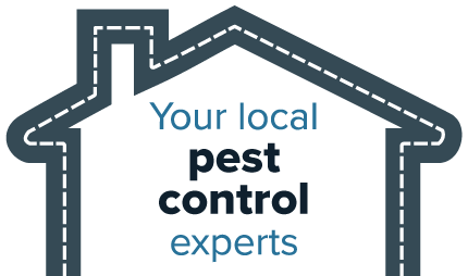 Your local pest control experts - Heron